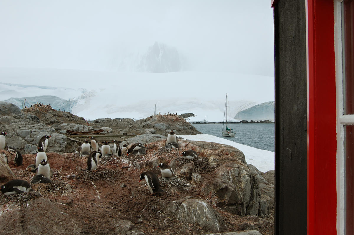 Port Lockroy window view